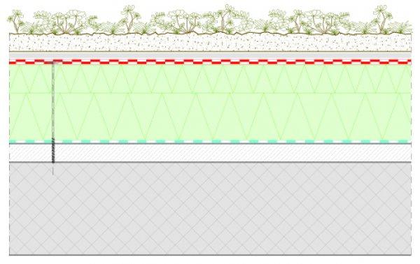 Detajl zelena streha Xeroflor