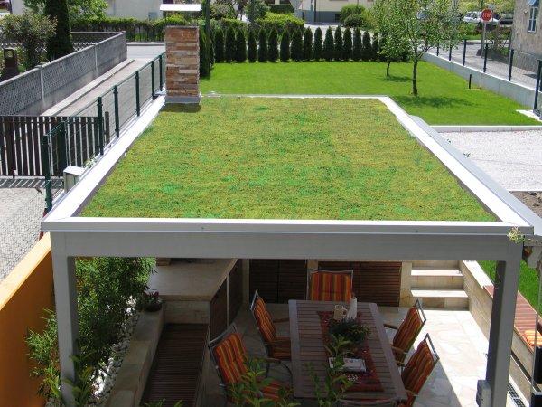 Končni izgled zelene nadstrešnice