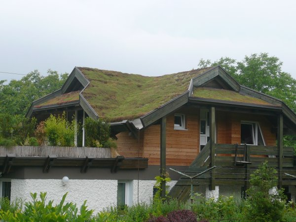 Končni izgled zelene strehe